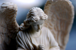 basic_angel